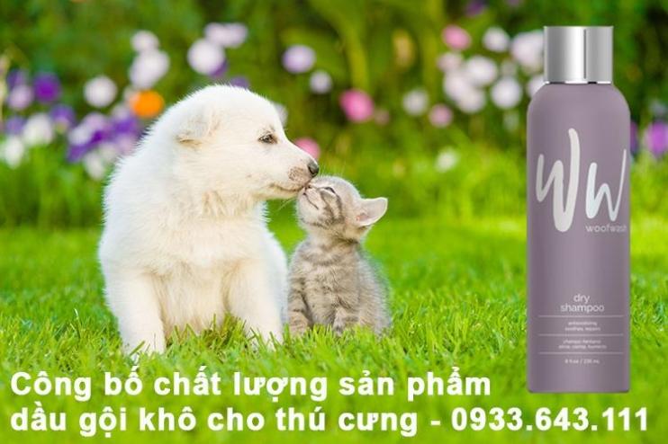Công bố sản phẩm dầu gội khô cho thú cưng tại Hà Nội