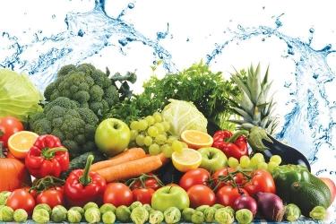 Hướng dẫn từng bước đăng ký FDA cho nhóm Thực phẩm - Phần 2