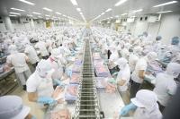 Chứng nhận HACCP cho cơ sở sơ chế, đóng gói thủy hải sản tại Hồ Chí Minh và trên toàn quốc